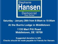 Vote for Stephanie Hansen (if you live in SD10) and work for her if you don't live in SD10