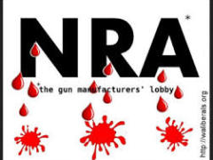 You've taken money from the NRA?  Your political career is over.