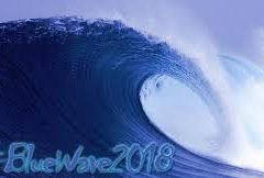 Blue Wave Watch – Delaware
